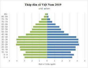 Tháp dân số Việt Nam 2019 được tính theo đơn vị triệu người