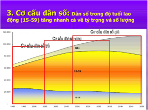 Biểu đồ thể hiện cơ cấu dân số trẻ, vàng, già tại Việt Nam theo từng giai đoạn